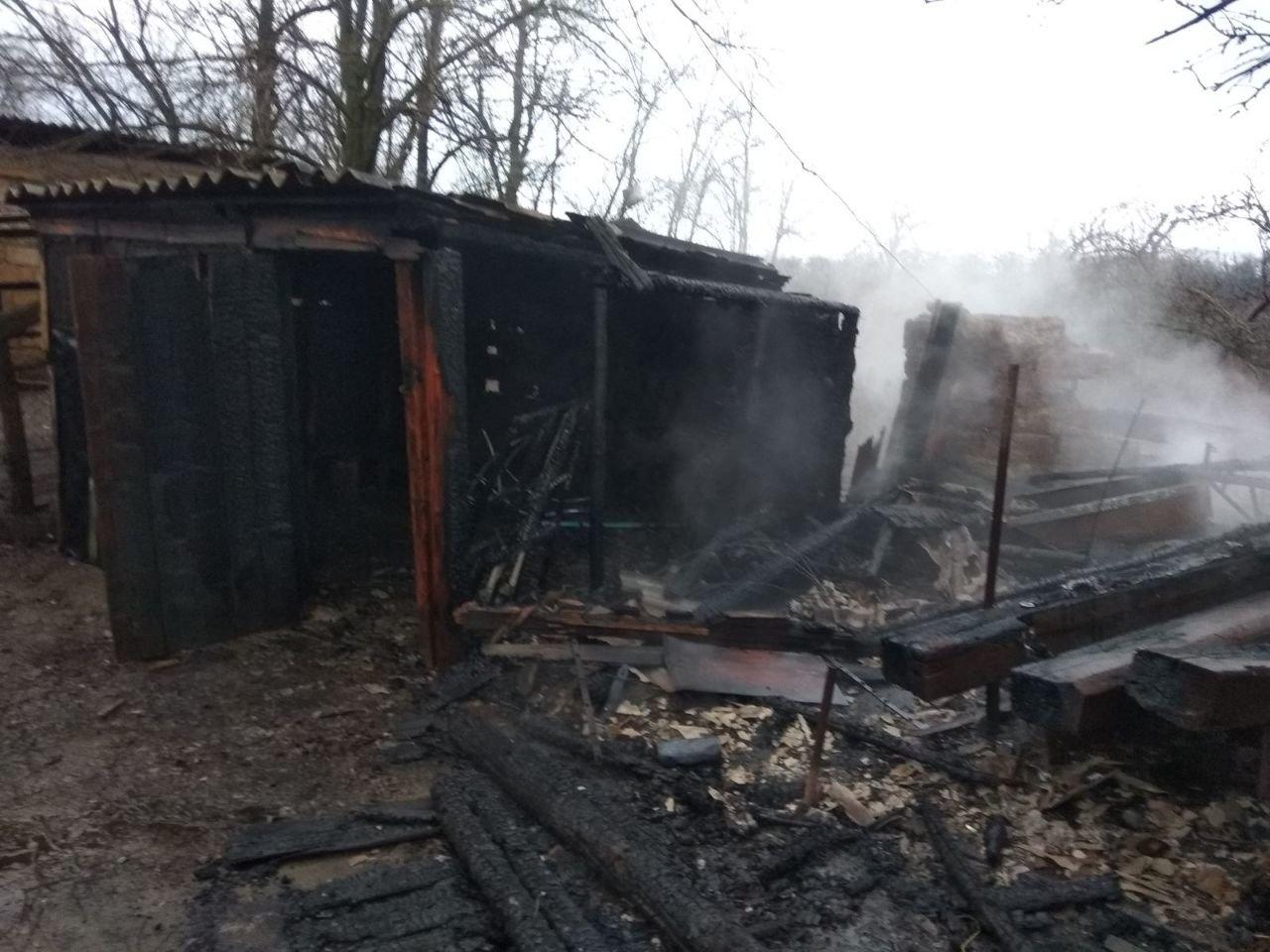 В Одесской области пожарные спасли частный дом от огня, - ФОТО, фото-1