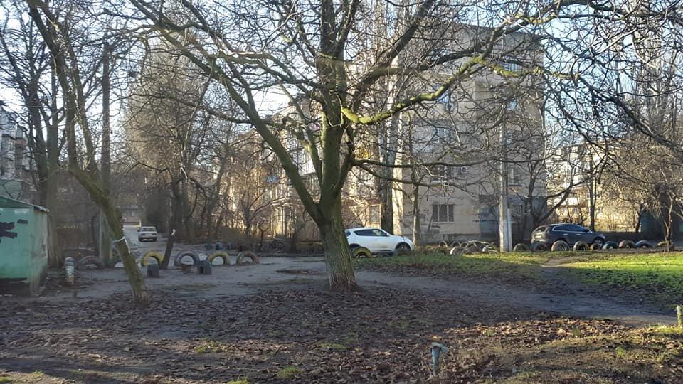 В Одессе возле Киевского суда собираются спилить 23 дерева, - ФОТО, ВИДЕО, фото-1