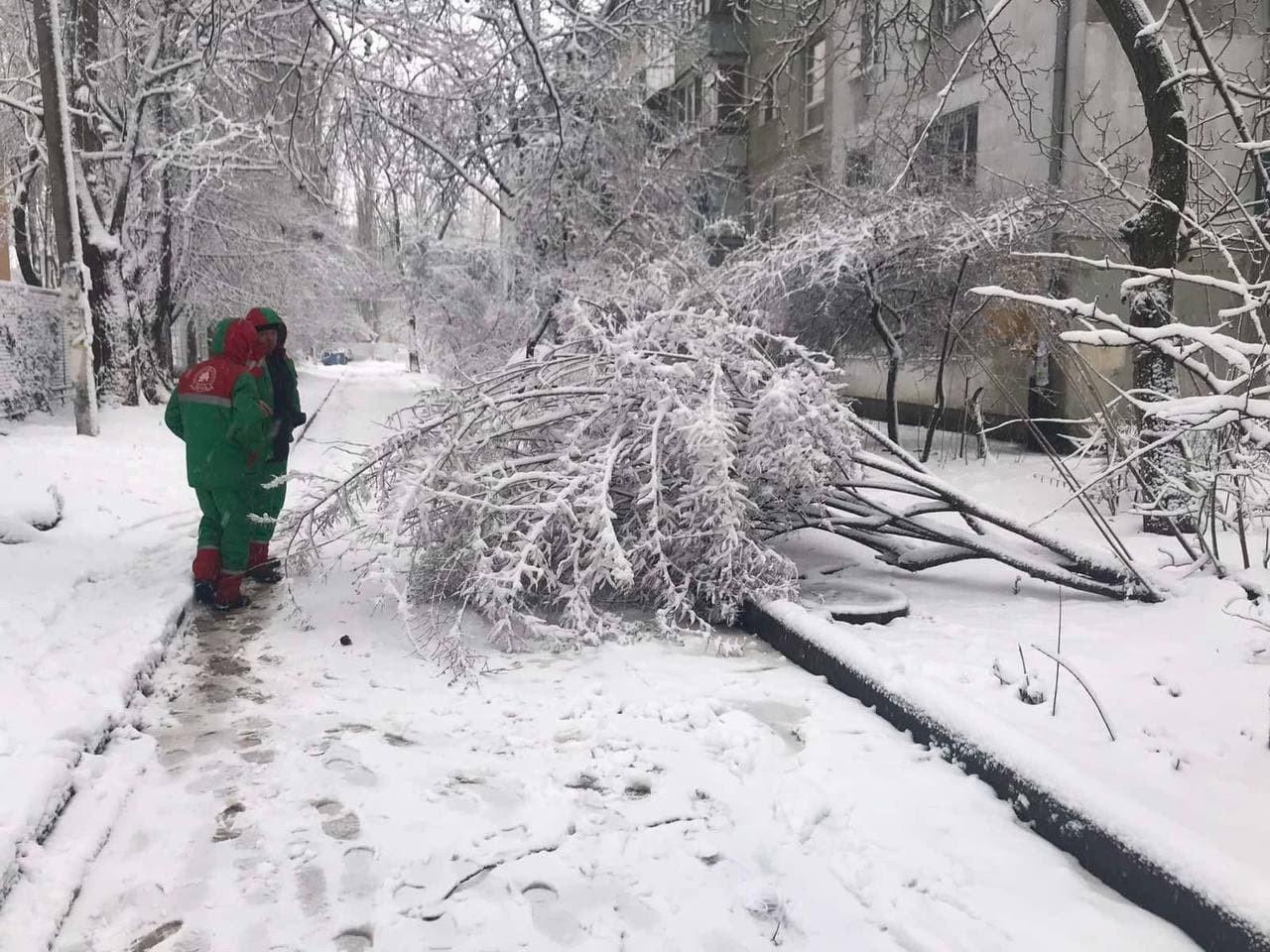 Стихия в Одессе: коммунальщики рассказали о ситуации в городе, - ФОТО, фото-3