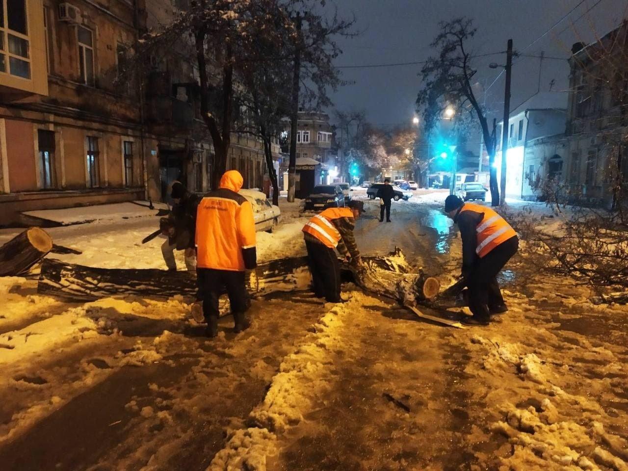 В Одессе упало почти 500 деревьев и крупных веток, - ФОТО, фото-3