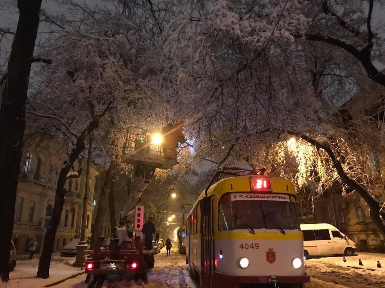 В Одессе упало почти 500 деревьев и крупных веток, - ФОТО, фото-1
