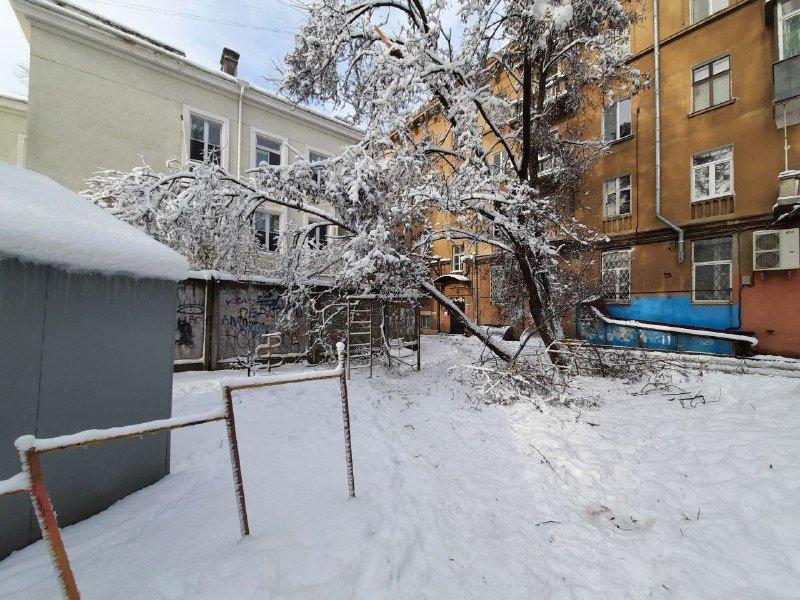 Коммунальщиков не видно: В Приморском районе Одессы лежат десятки деревьев, - ФОТОРЕПОРТАЖ, фото-19
