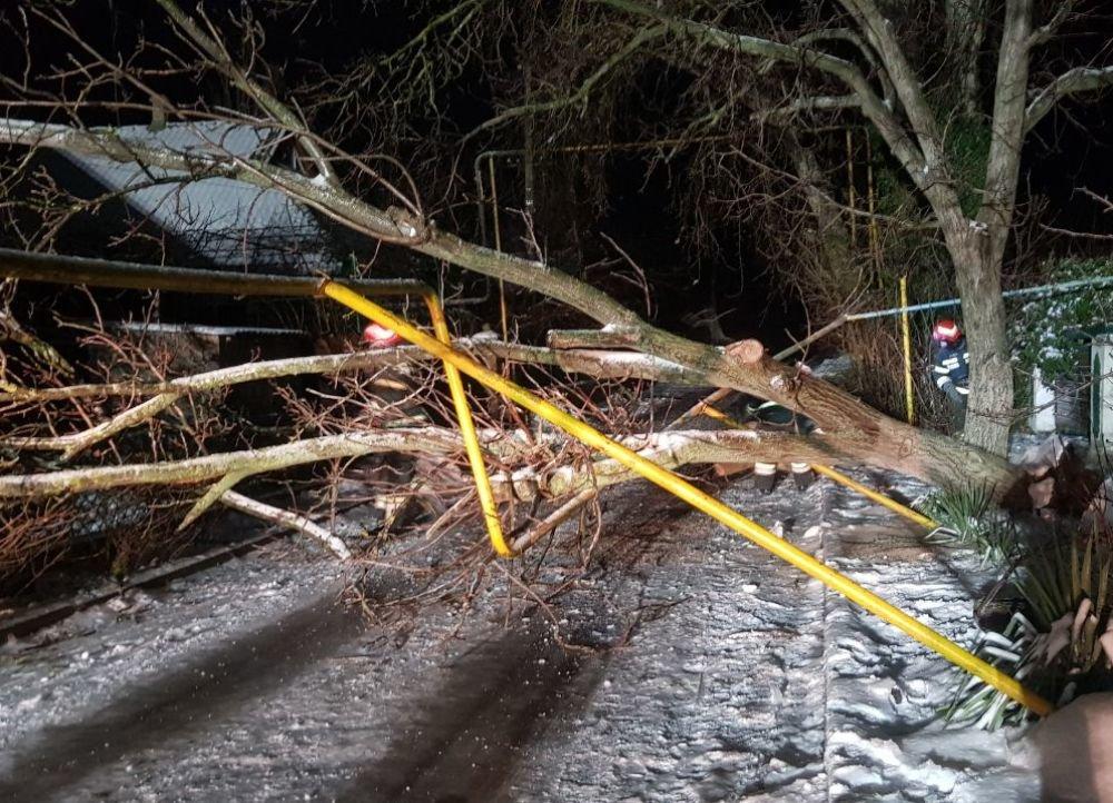 За сутки в Одесской области произошло 26 чрезвычайных ситуаций, - ФОТО, фото-1