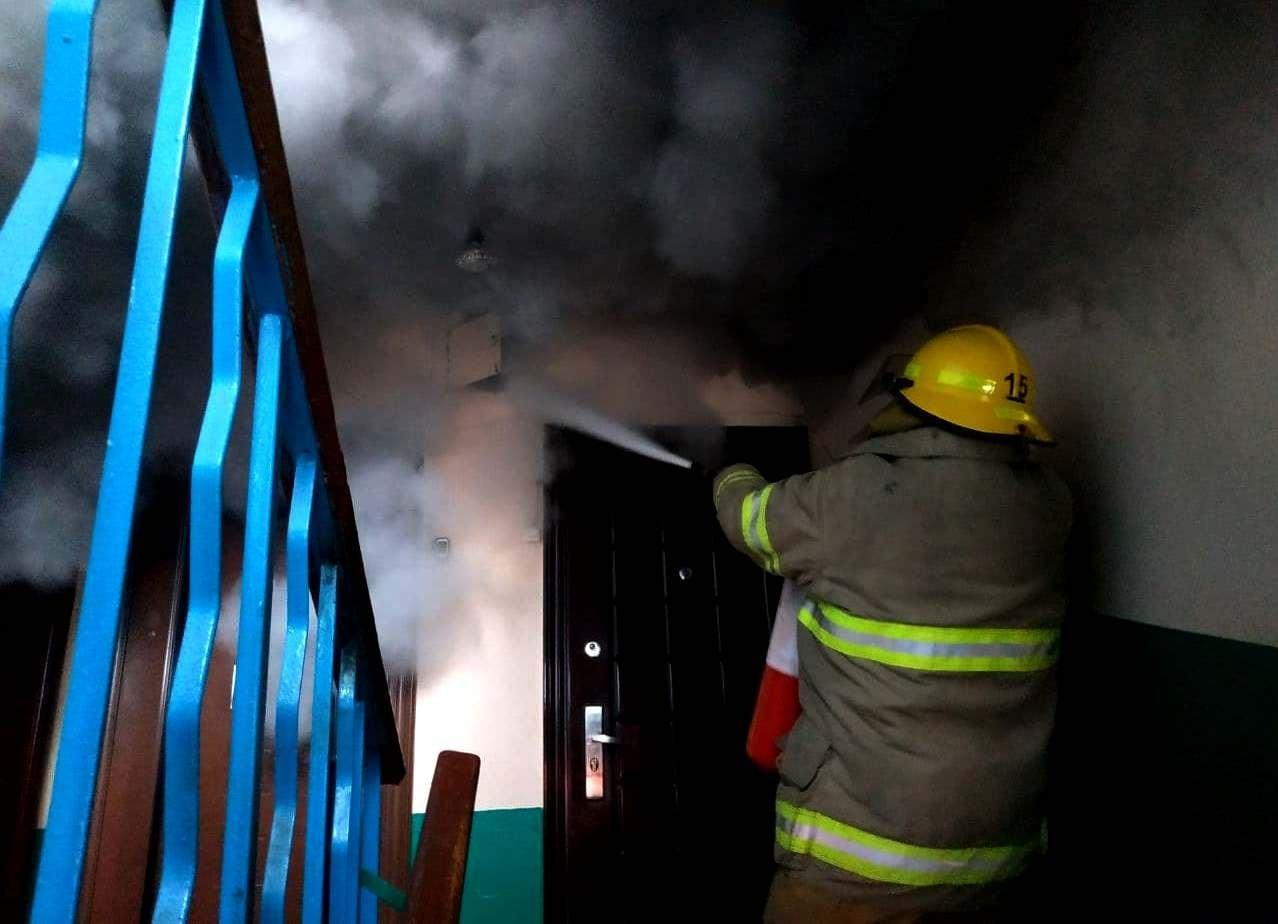 В Одесской области пожарные спасли многоквартирный дом от огня, - ФОТО, фото-1
