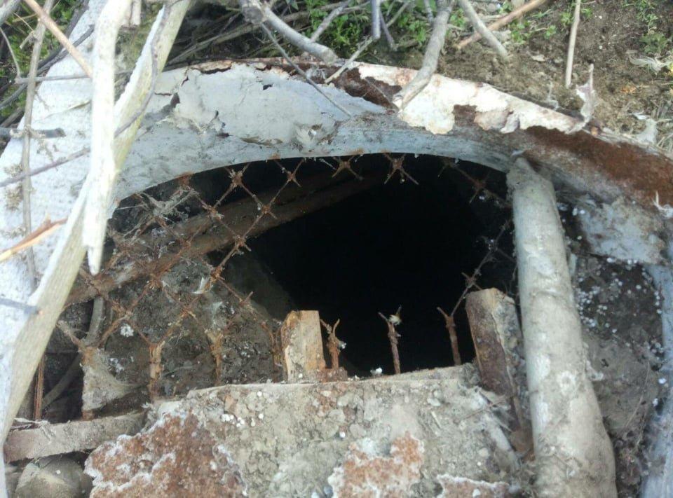 В Одесской области спасатели доставали собаку из выгребной ямы, - ФОТО, фото-2