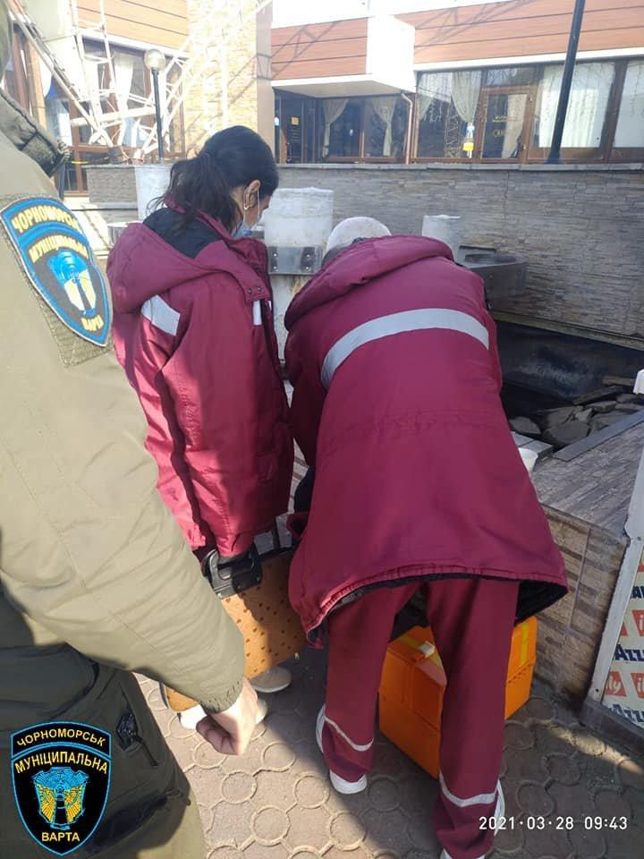 Нашли на тротуаре: в Одесской области спасли жизнь пожилому мужчине, - ФОТО, фото-2