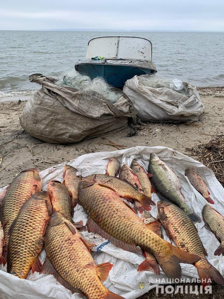 В Одесской области задержали трех браконьеров, - ФОТО, фото-1