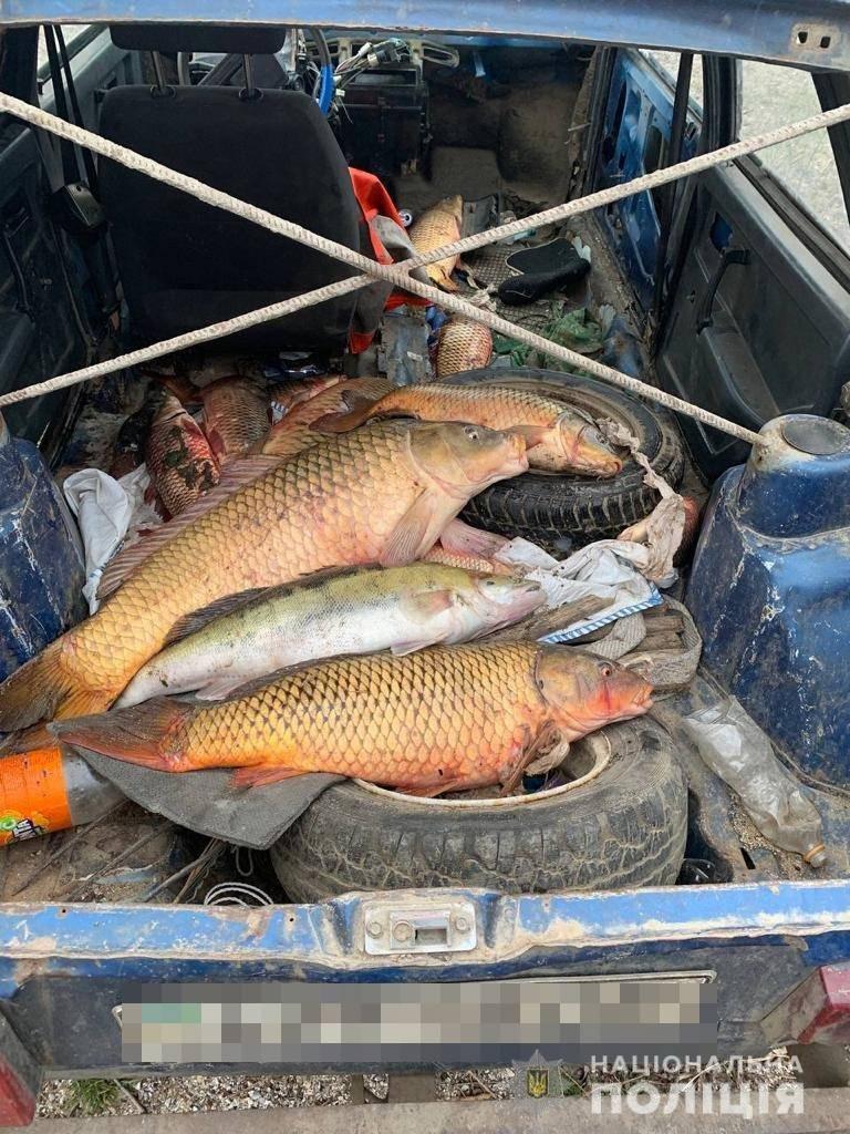 В Одесской области задержали трех браконьеров, - ФОТО, фото-2