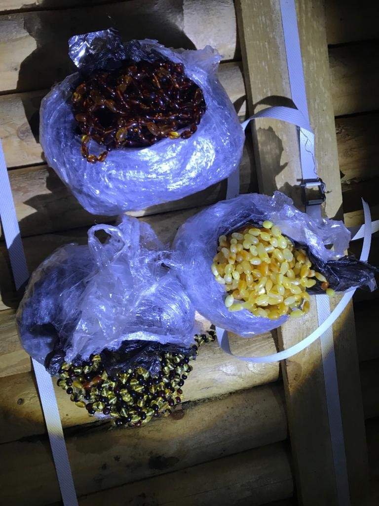 Под Одессой служебный пёс помог обнаружить 5 кг янтарных украшений, - ФОТО, фото-1
