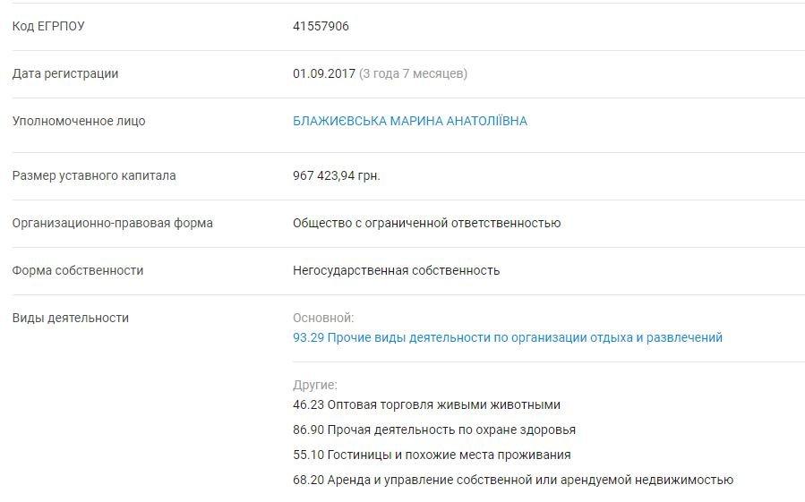 Декларация Кучука: у жены первого вице-мэра совместный бизнес с российским предпринимателем, фото-5
