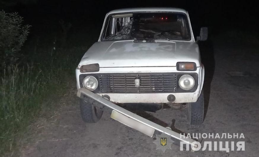 В Одесской области водитель насмерть сбил пешехода, - ФОТО, фото-1