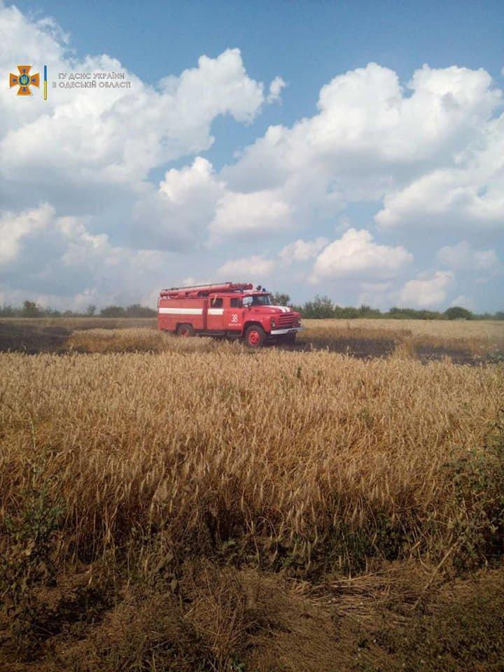 В Одесской области горели поля и свалка, - ФОТО, фото-3