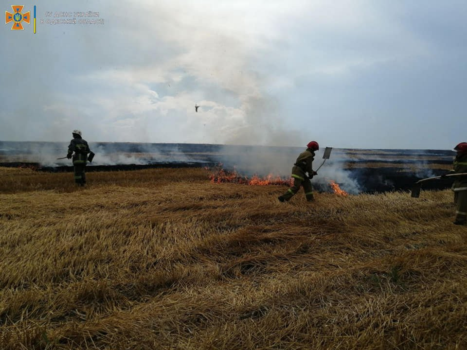 В Одесской области горели поля и свалка, - ФОТО, фото-2