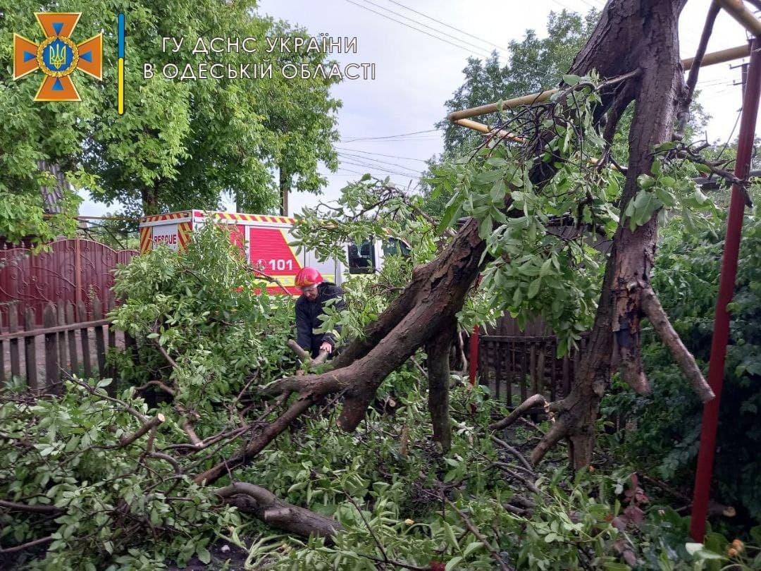 Затопленные дома, поврежденные крыши и деревья: в Одесской области бушевала стихия, - ФОТО, фото-2