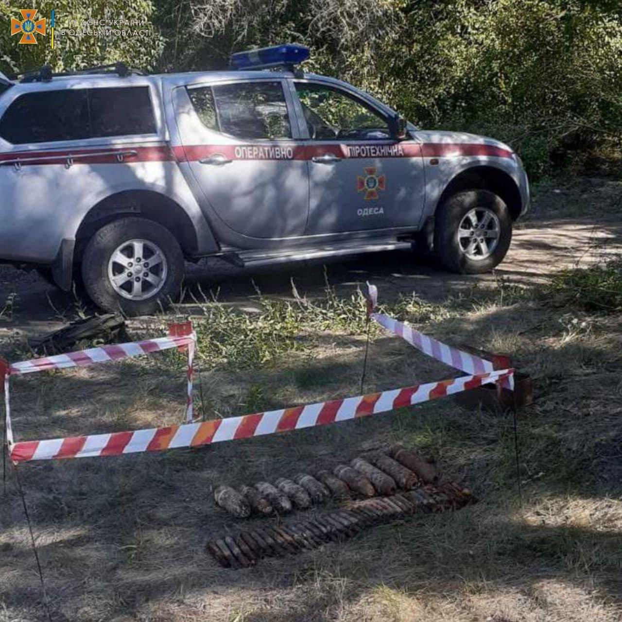 В лесу вблизи Одессы нашли 30 артснарядов Второй Мировой войны, - ФОТО, фото-2