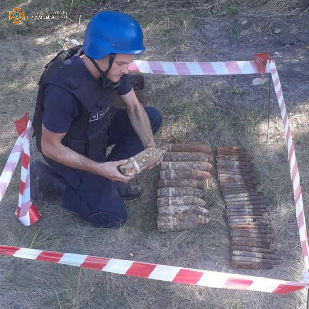В лесу вблизи Одессы нашли 30 артснарядов Второй Мировой войны, - ФОТО, фото-1