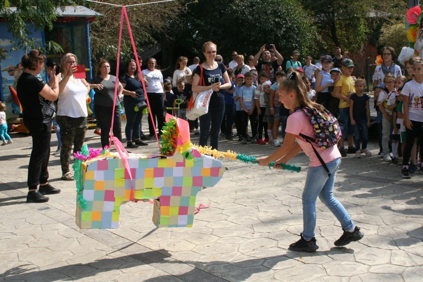 Одесскому зоопарку исполнилось 99 лет, как отмечали это событие горожане, - ФОТОРЕПОРТАЖ , фото-5