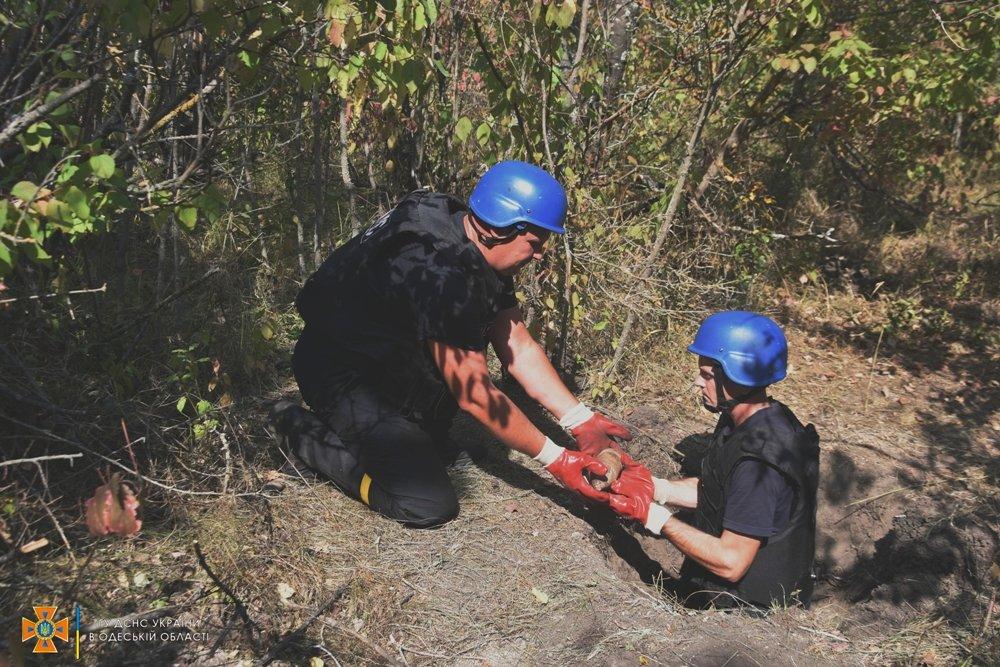 В лесу под Одессой нашли более 300 артснарядов и гранат, - ФОТО, фото-1
