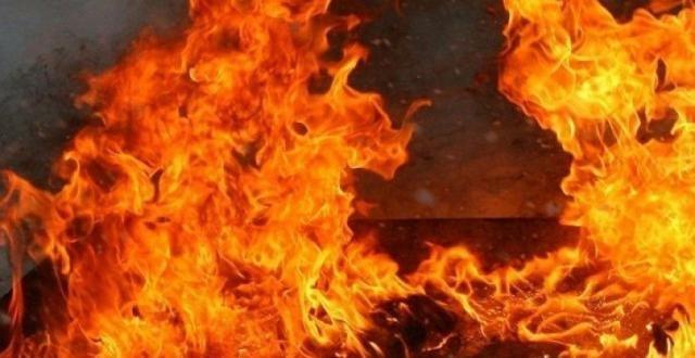 Под Одессой горела заброшенная ферма, - ФОТО0
