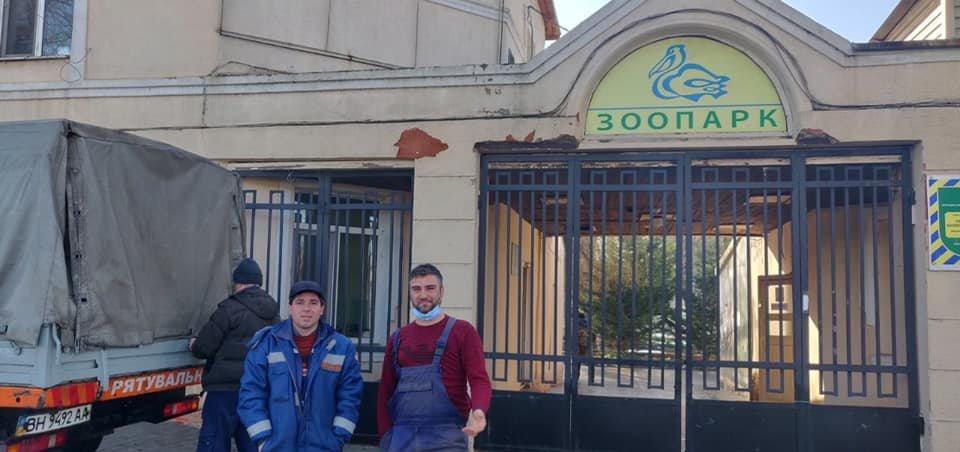 В Одессе от голода спасли лебедя, - ФОТО0